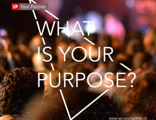 What is your purpose - CMD Next